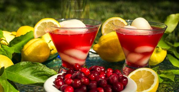Ciroc-Cran-Limon-Mimosa-News-IMG_5997